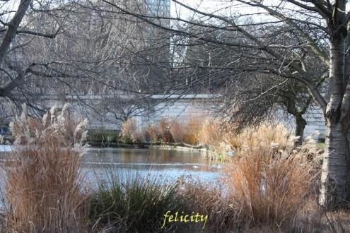 felicity25